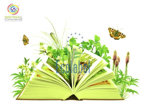 Certificazione Ecolabel Marchio Ambientale Qualità Ecologica
