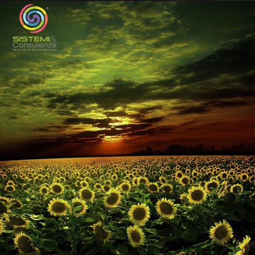 Certificazioni Ambientali Sostenibilità Ambientale