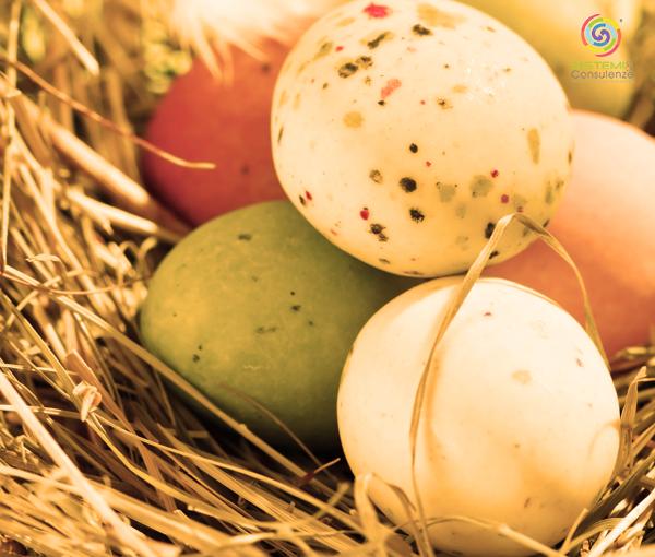 Classificazione delle uova tracciabilità ed origine