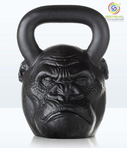 Il PDCA nel Bodybuilding la qualità nel fitness