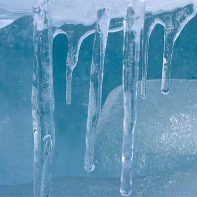 Procedura per la gestione della catena del freddo