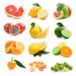 Prodotti Marchio Il mercato Alimentare dei Privato Private Label