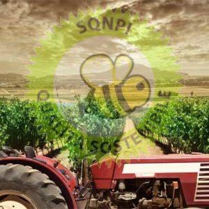 Certificazione SQNPI Produzione Integrata