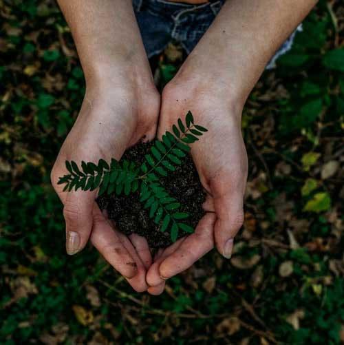 sostenibilità ambientale sociale ed economica
